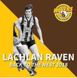 Welcome Back Lachlan Raven